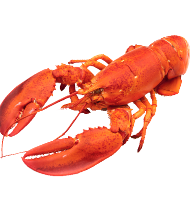 product-redlobster